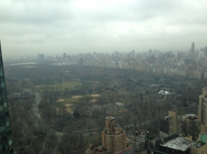 Want a view of central park from the 44th floor of Hearst tower? You're welcome.Photo by Kate Stringer